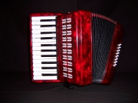 25 Note Accordion